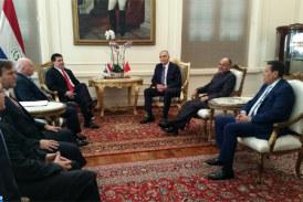 Le ministre des Affaires étrangères et de la coopération reçu à Asuncion par le président du Paraguay