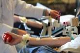 Dar Bouazzza: Campagne de don de sang pour renflouer les stocks