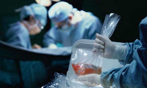 Don d'organes, don de vie : Entre la générosité et la réticence des Marocains