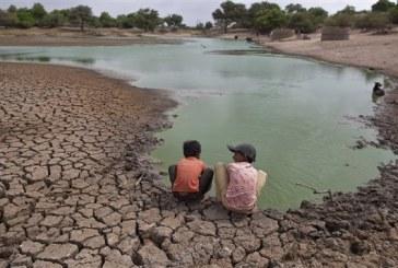 La FAO appelle à une aide d'urgence à dix pays d'Afrique australe menacés de sécheresse