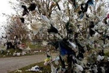 Journée mondiale sans sacs plastiques: des efforts incessants pour lutter contre un ennemi juré de l'environnement