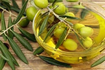 M. Akhannouch lance à Tiznit un projet de plantation de 400 ha en oliviers