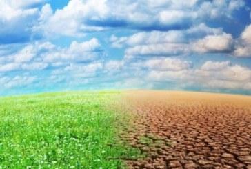 La COP 22: Mobilisation des actions pour la protection de  l'Environnement