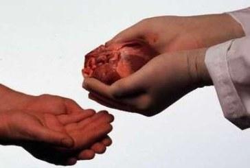 Le don d'organe : 460 greffes de rein réalisées au Maroc !