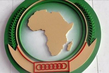 Plaidoyer pour la promotion de la diplomatie parallèle afin d'accompagner les initiatives royales en Afrique