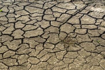 La sécheresse menace 17 millions de personnes dans la Corne de l'Afrique