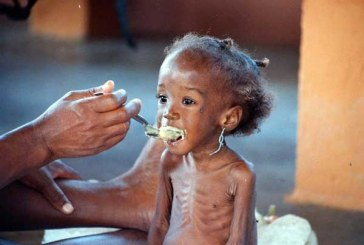 Les crises et les conflits, principales causes de l'insécurité alimentaire en Afrique du Nord