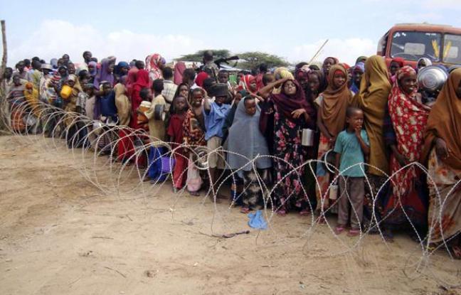 Somalie: plus d'un million d'enfants menacés de malnutrition aiguë