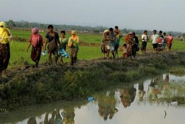 Plus de 123.600 musulmans Rohingyas fuient la Birmanie pour se réfugier au Bangladesh