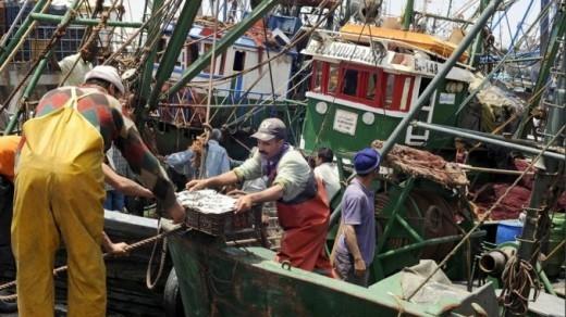 Hausse de 7% des débarquements de la pêche côtière et artisanale à fin septembre 2017