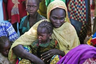 """Cameroun: la lutte contre Boko Haram """"aggrave"""" la pauvreté dans l'Extrême-Nord"""