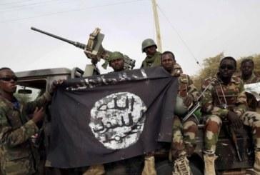 """Nigeria : Les Etats-Unis appellent à plus de """"transparence"""" dans la lutte contre Boko Haram"""