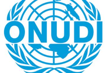 Autriche : élection du Maroc à la vice-présidence de la conférence générale de l'ONUDI