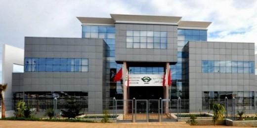 Examen à Rabat des moyens de mise en œuvre de l'accord-cadre entre l'AMCI et le Niger