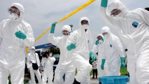Vietnam : découverte d'un foyer de grippe aviaire A/H5N6 au nord du pays
