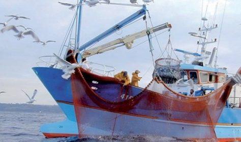 Tanger: La Fédération des Chambres de pêches maritimes approuve son plan d'action 2018
