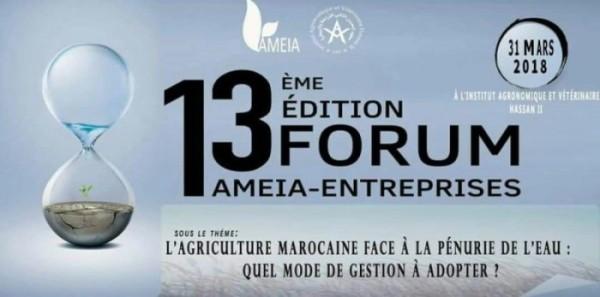 Rabat: 13 ème édition du Forum AMEIA-ENTREPRISES le 31 mars 2018
