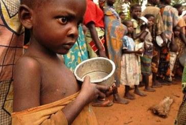 RDC : Plus de deux millions d'enfants risquent de mourir à cause d'une malnutrition aigue