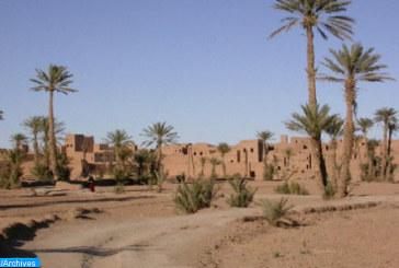 Lancement à Errachidia d'un projet visant la sauvegarde des espaces oasiens