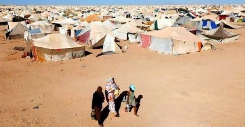 Des ONG latino-américaines dénoncent les graves atteintes aux droits de l'Homme commises par le Polisario