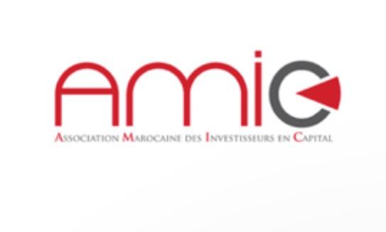 RAPPORT D'ACTIVITÉ 2017 DES ACTEURS MAROCAINS DU CAPITAL INVESTISSEMENT