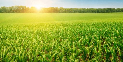 La saison agricole 2017-2018 s'annonce sous les meilleurs auspices