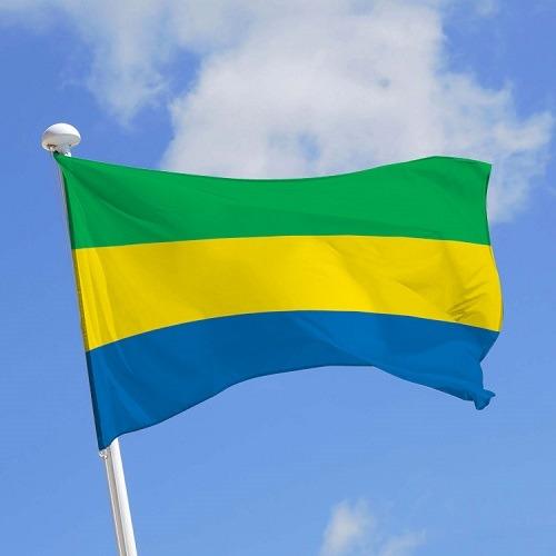 Le Gabon se dote d'une haute autorité de la communication