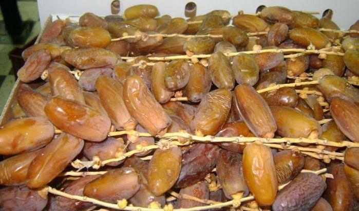Marrakech: Saisie d'environ 14 tonnes de dattes impropres à la consommation