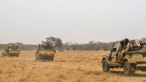 Mali: 17 civils tués par des jihadistes présumés à la frontière nigérienne