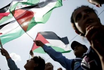 Palestine, l'État second: Samedi 12 mai à 22h15 sur France 24