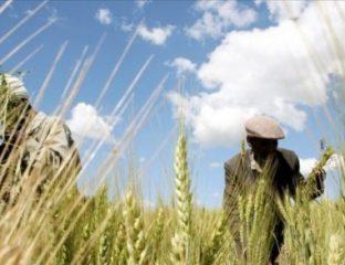 Burkina: un tiers de la population en difficulté alimentaire en 2018
