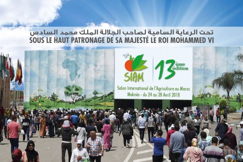 SIAM 2018: La Région de Rabat-Salé-Kénitra classée 2-ème parmi les régions médaillées