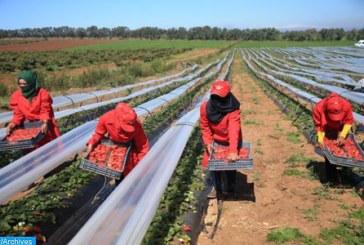 Travailleuses marocaines à Huelva: un cas de harcèlement sexuel