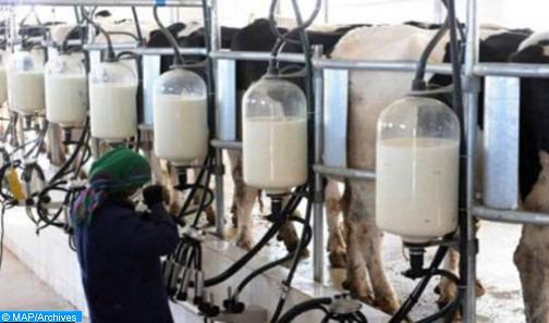 L'ONSSA rassure sur la qualité des produits laitiers commercialisés