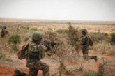 Somalie: 27 membres du groupe Shabab tués dans raids de l'armée US