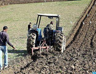 Campagne agricole 2017-2018: une récolte de 103 millions de quintaux, un record historique de rendement