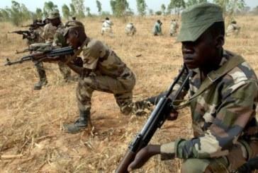 """Niger: dix """"terroristes"""" de Boko Haram tués dans le sud-est"""
