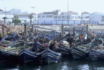 Souss-Massa: Pêche et environnement au menu d'une prochaine session du Conseil régional