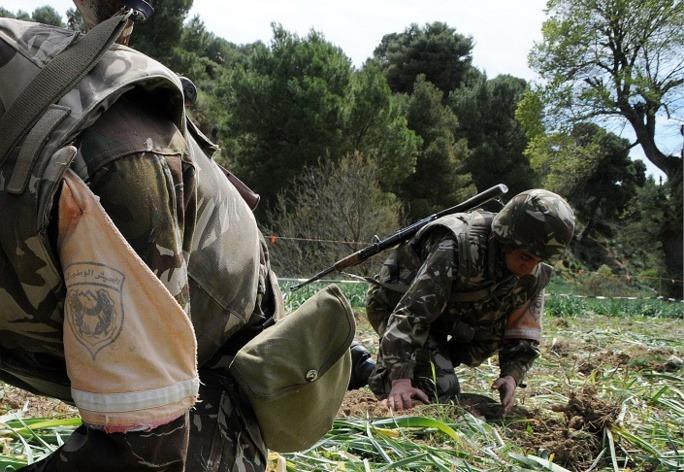 Deux enfants tués dans l'explosion d'une grenade artisanale en Algérie