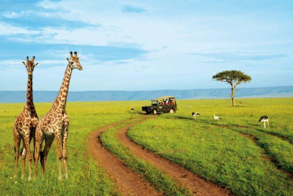 L'Afrique essaie d'étoffer son offre touristique