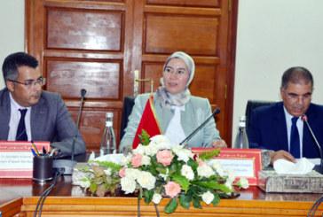 Lancement d'un système régional pilote de détection et de mesure des émissions polluantes dans la région Souss-Massa