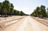 Province de Jerada : aménagement de 110 km de pistes rurales par le Conseil de la région de l'Oriental