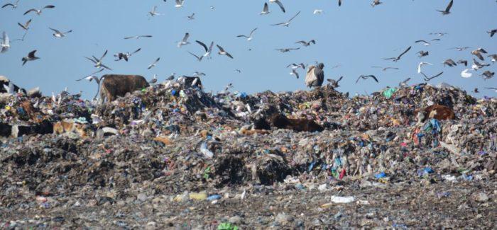 La décharge de Mediouna, un désastre écologique fumant