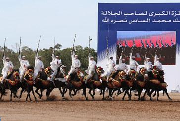 Salon du Cheval : Coup d'envoi des épreuves du Grand Prix de SM le Roi Mohammed VI de Tbourida