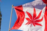 Légalisation du cannabis au Canada : Enfin le jour J est arrivé