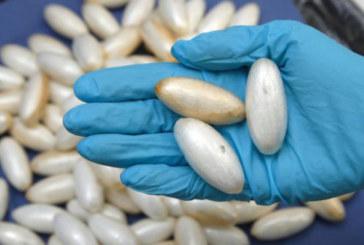Casablanca: 1,115 kg de cocaïne extrait de l'estomac d'un ressortissant portugais