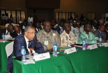 Bénin: le Directeur Général de l'ONEE présente la candidature du Maroc pour l'Assemblée Générale du WAPP de 2019