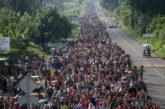 Caravanes de désespoir en marche vers « l'American Dream »