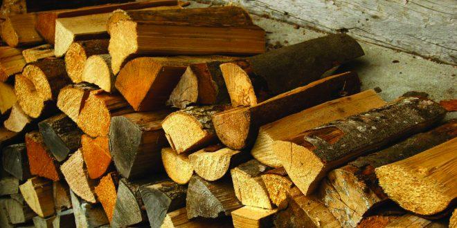 Lhafi optimiste quant au bilan de la stratégie bois-énergie