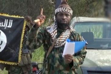 Les islamistes tuent au moins 10 personnes dans le but de prendre une ville du nord-est nigérien